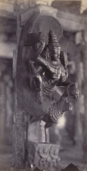 Madura. The Great Pagoda [Minakshi Sundareshvara Temple]. Carved pillar in the Thousand Pillar Portico [Airakkal Mandapa] 212223